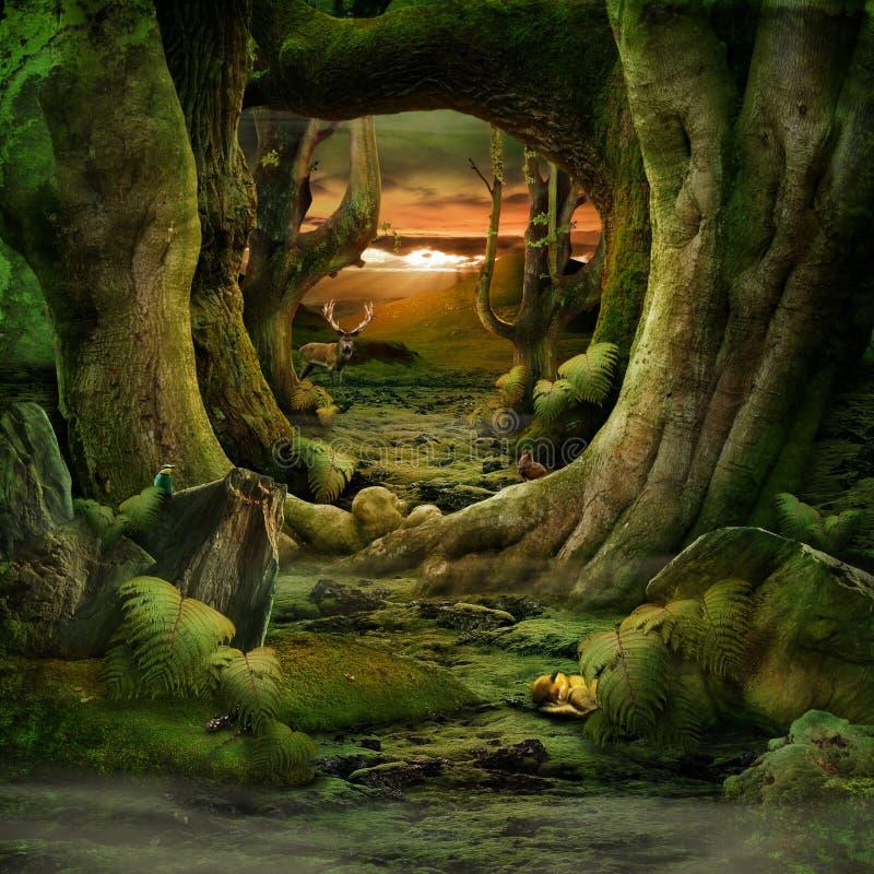 Paradis vert image libre de droits