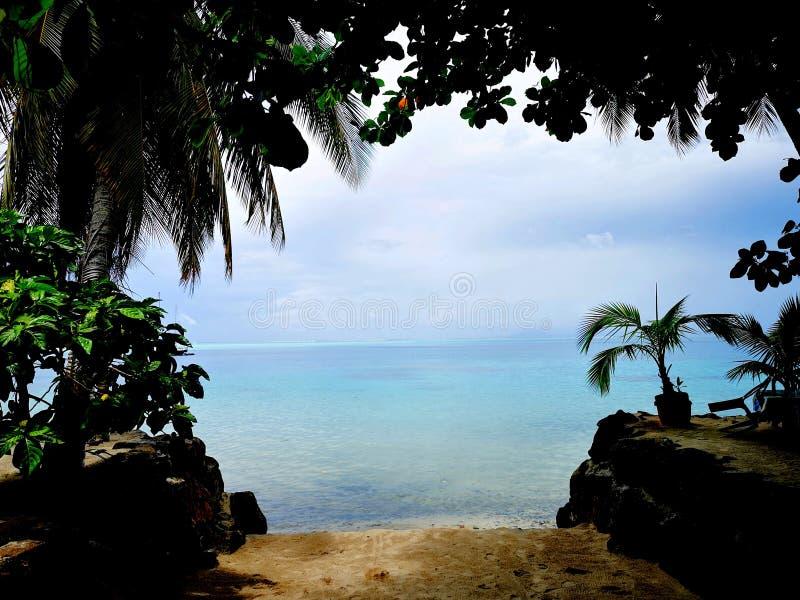 paradise fotografia de stock royalty free
