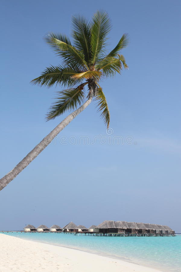 Download Paradise stock image. Image of beautiful, tropics, island - 28909093