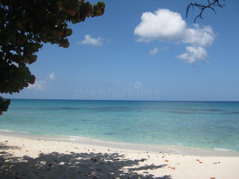 paradise fotografia stock