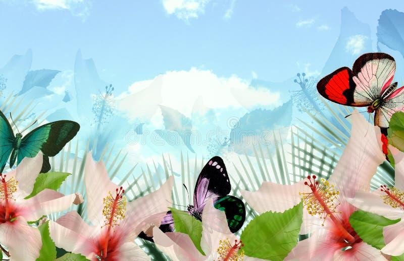 Download Paradise bay stock illustration. Image of polynesian - 14595023