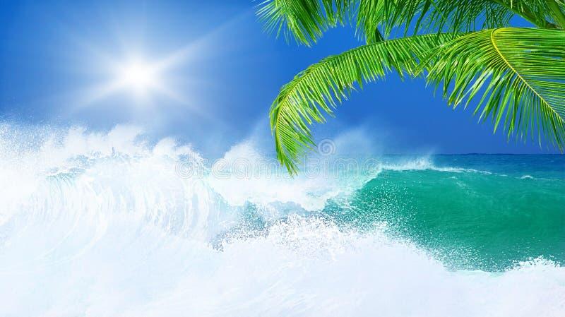 Download Paradise beach stock photo. Image of nature, beach, scene - 24287700