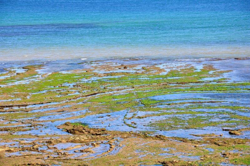Download Paradise beach stock photo. Image of paradise, nature - 26277924