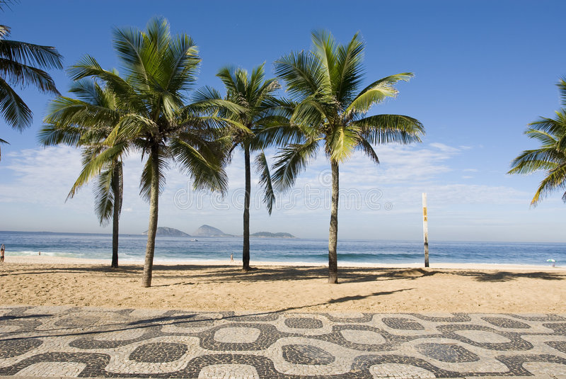Download Paradise beach stock image. Image of tree, brazil, coastline - 5009513