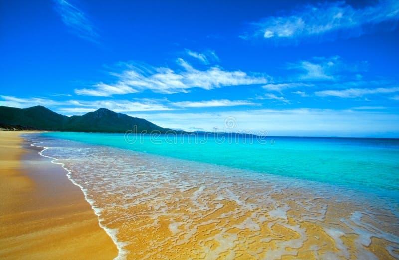 Paradise beach. In Freyssinet national park, Tasmania