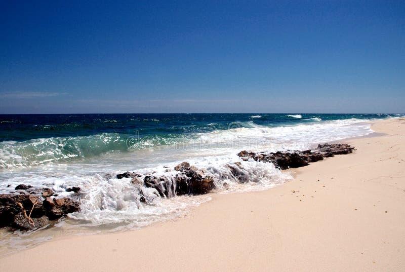 Paradise beach. A paradise beach and sea with white waves and blue sky stock photos