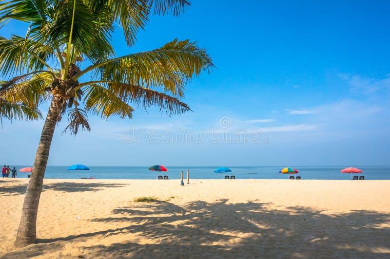 Paradise beach on the Arabian sea coast. India, Kerala royalty free stock photo