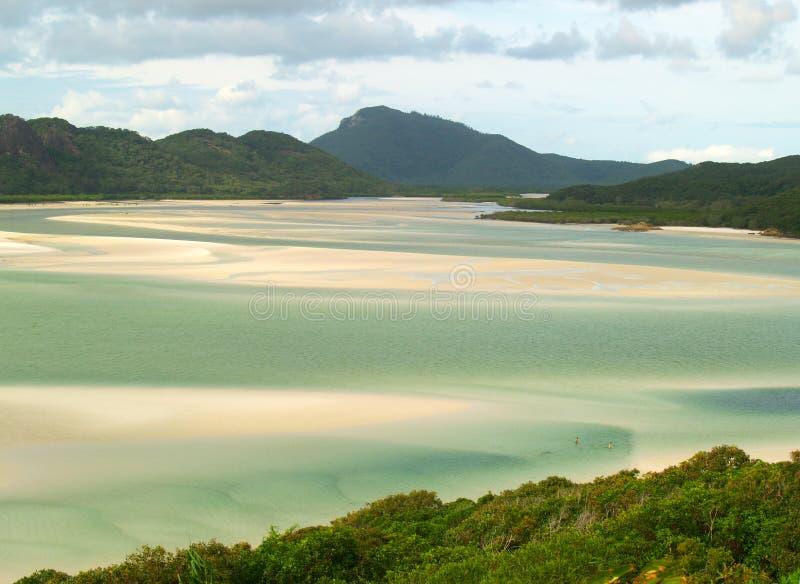 Paradise beach in Australia royalty free stock photography