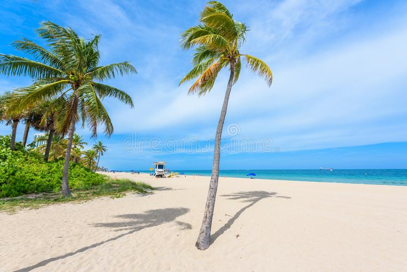 Paradise beach at Fort Lauderdale in Florida on a beautiful sumer day. Tropical beach with palms at white beach. USA. royalty free stock photography