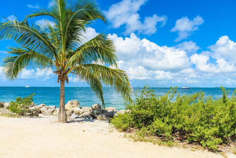 Paradise beach at Fort Zachary Taylor Park, Key West. State Park in Florida, USA royalty free stock photo