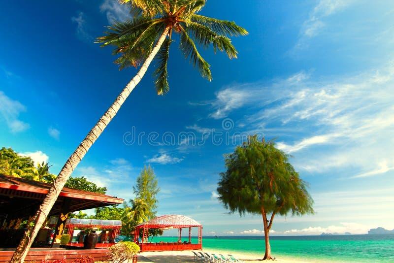 Paradise beach in kohngai island at trang Thailand. Kohngai island at trang Thailand stock photo