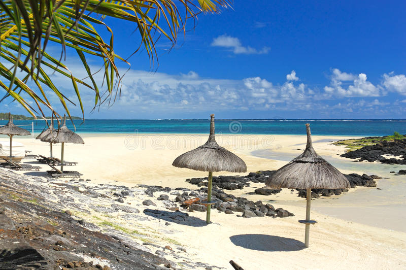 Paradise beach and the ocean royalty free stock image