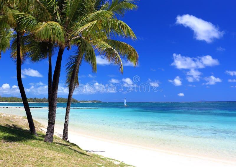 Paradise beach in tropical island stock photo