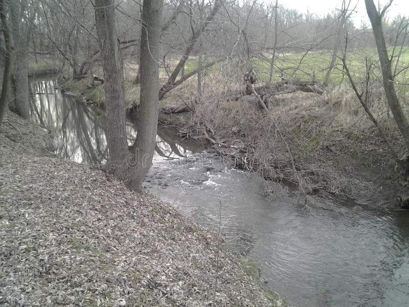Paradise Cove Creek. Bank & trees royalty free stock photography