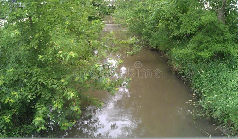 Paradise Cove Creek. View from the covered bridge royalty free stock photography