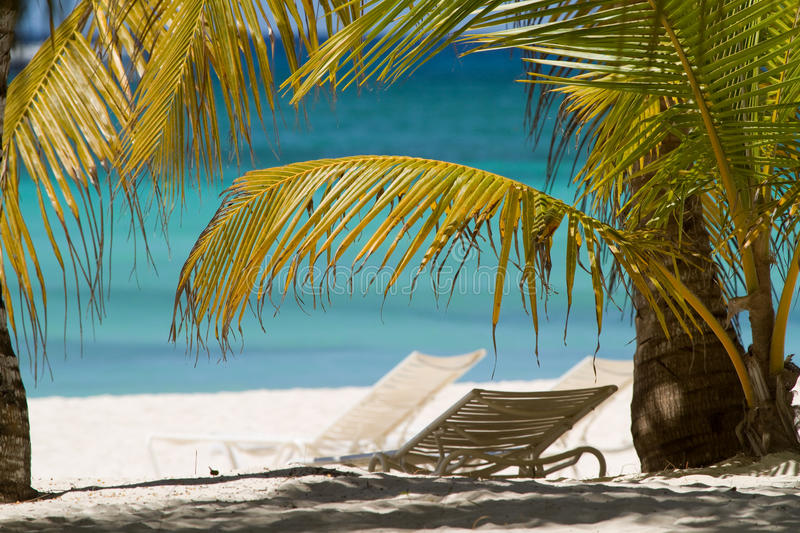 Download Paradise on earth stock photo. Image of travel, dominican - 22099814