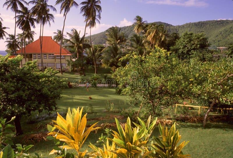 Paradise Found stock image