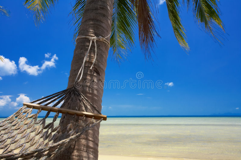 Download Paradise and hammock stock photo. Image of laze, hummock - 2300824