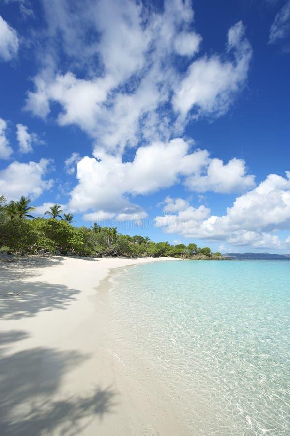 Paradise Idyllic Caribbean Beach Virgin Islands Vertical. Shallow waters lap the shores of deserted Caribbean paradise beach in the Virgin Islands stock image