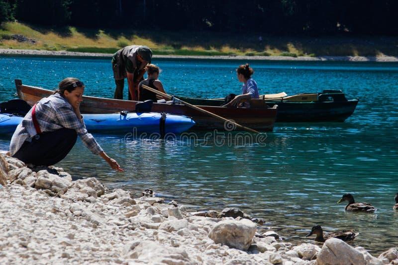 Paradise-meningen van het nationale park Durmitor in Montenegro Turkoois water van het meer, het pijnboombos en de bergen Het ove stock fotografie