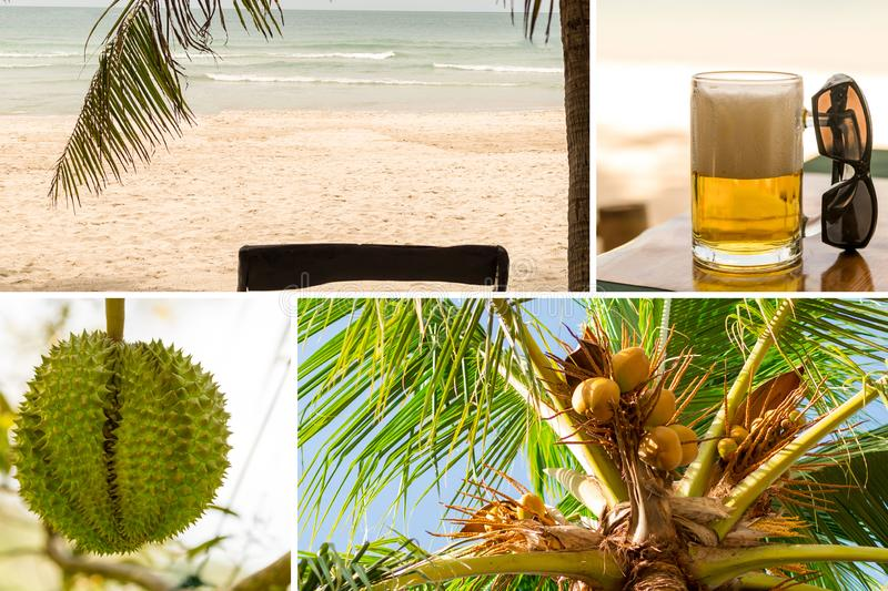 Paradise rest collage asia beach sand ocean coconuts on palm green prickly durian one-piece fruit refreshing mug of beer royalty free stock images