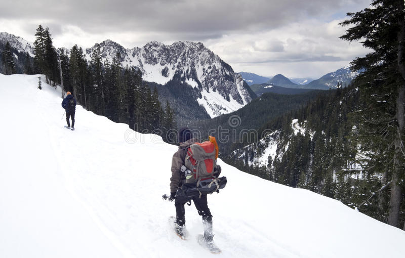 Hikers Travel Paradise Ridge Nisqually Valley. Hikers on the Road to Paradise on Mt. Rainier covered in snow overlooking the Nisqually Valley stock photography