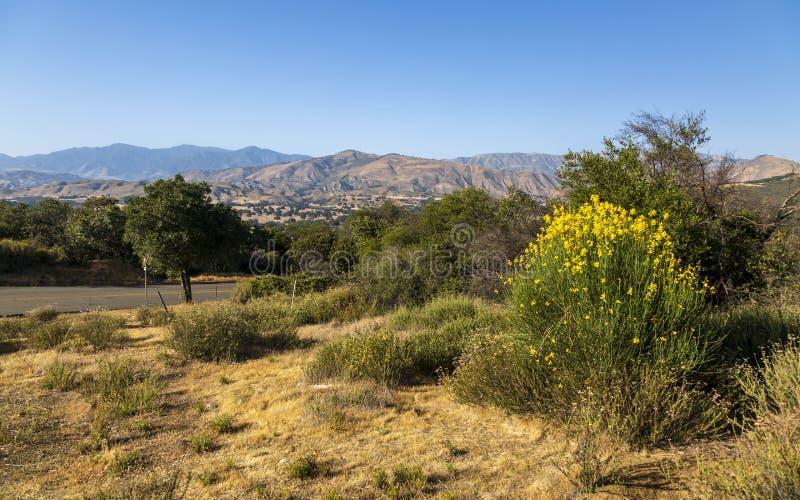 Paradise Road Santa Barbara, Santa Ynez Mountains royaltyfria bilder