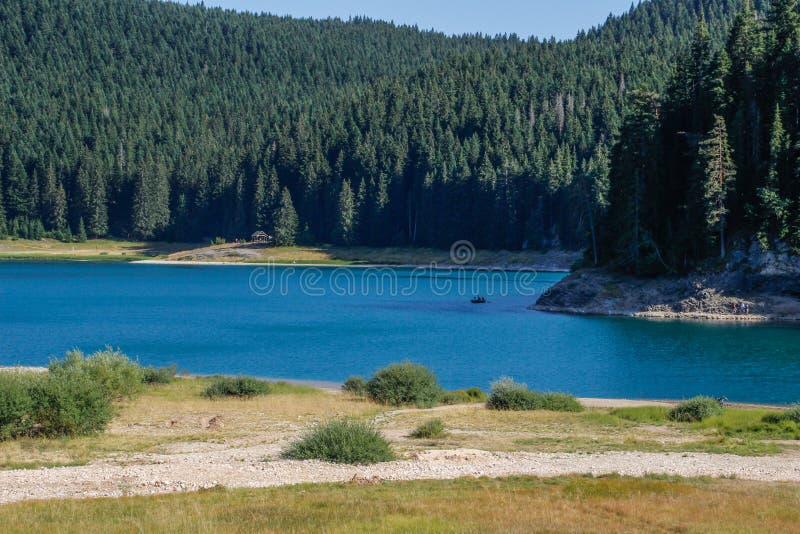 Paradise sikter av nationalparken Durmitor i Montenegro Turkosvatten av sj?n, pinjeskogen och bergen Bed?va backg arkivfoton