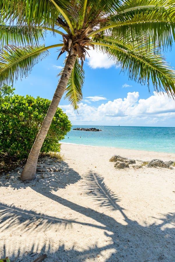 Paradise strand p? fortet Zachary Taylor Park, Key West delstatspark i Florida, USA arkivfoto