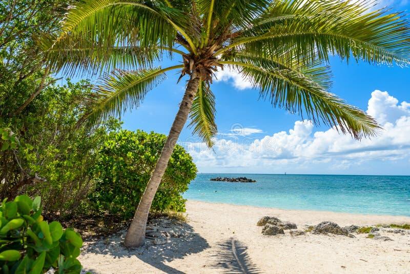 Paradise strand p? fortet Zachary Taylor Park, Key West delstatspark i Florida, USA royaltyfria bilder