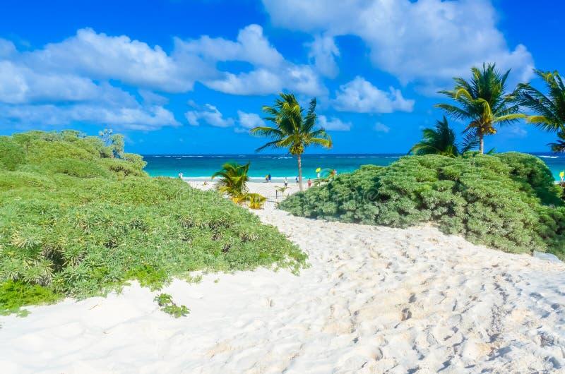 Paradise-Strand von Tulum, Quintana Roo, Mexiko Mayaruinen von Tulum an der tropischen Küste stockfotos