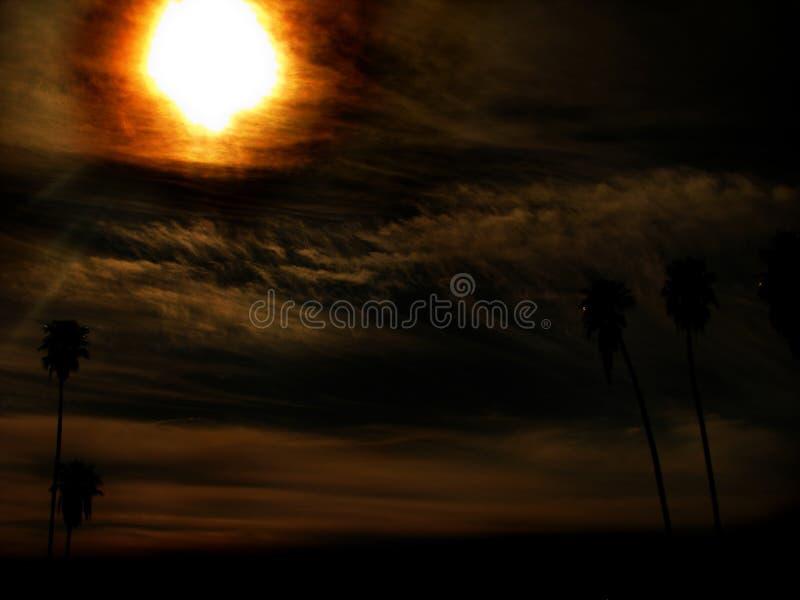Download Paradise Sun Burn stock photo. Image of burn, springs - 4670392