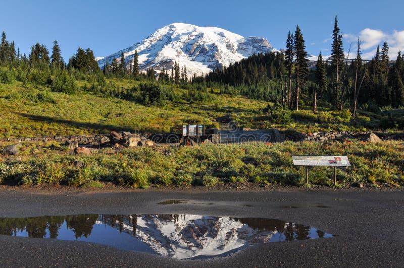 Paradise trail in Mount Rainier National Park, Washington, USA royalty free stock image