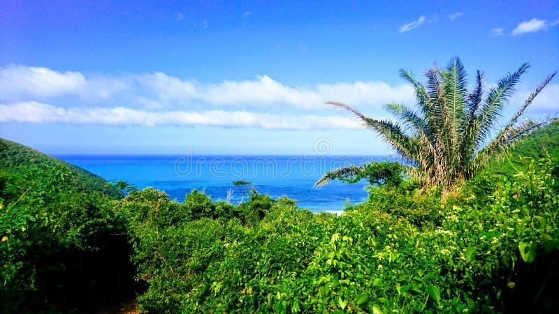 Paradise view of palms and carribbean sea at Playa Brava, Teyrona Nationalpark, Colombia royalty free stock photography