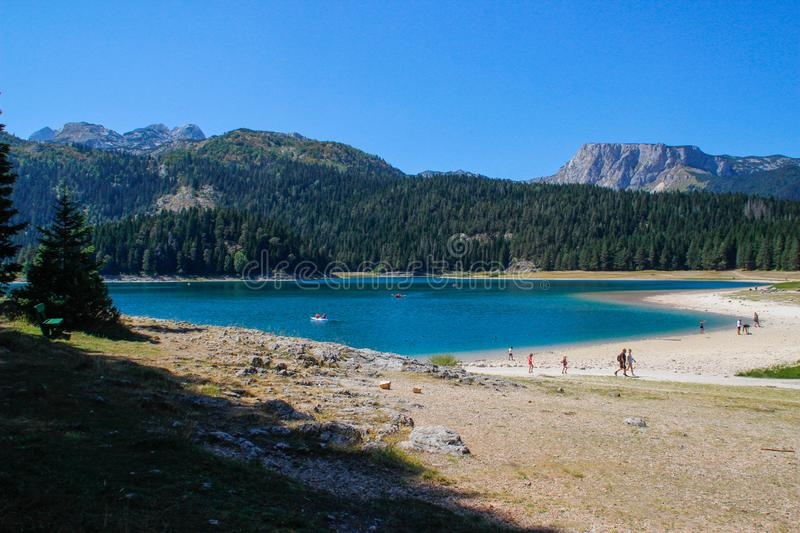 Paradise views of the national park Durmitor in Montenegro. Turquoise water of the lake, pine forest and mountains. Stunning backg royalty free stock photography