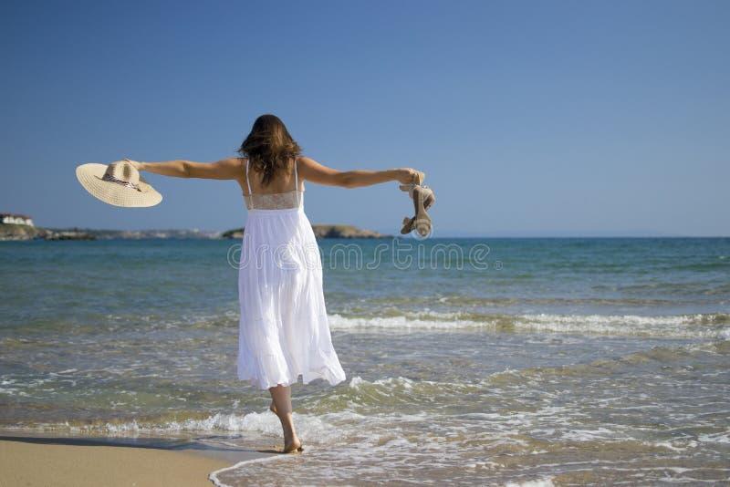 Download Paradise walk stock photo. Image of ocean, free, enjoying - 25986212