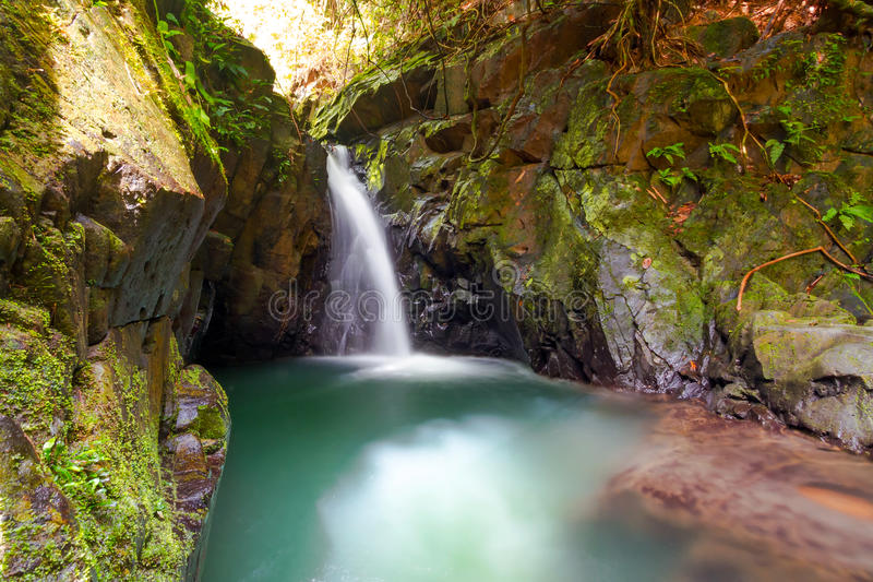 Download Paradise Waterfall In The Jungle Stock Image - Image: 29629277