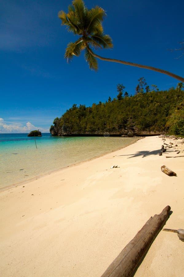 Paradise white sand tropical island beach