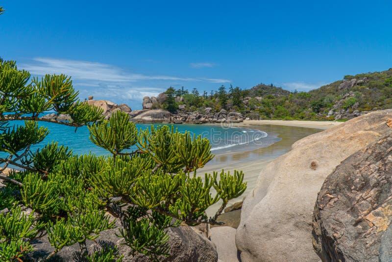 Paradisiacaal strand met blauw water van Magnetic Island in het noordwesten van Australië royalty-vrije stock foto's