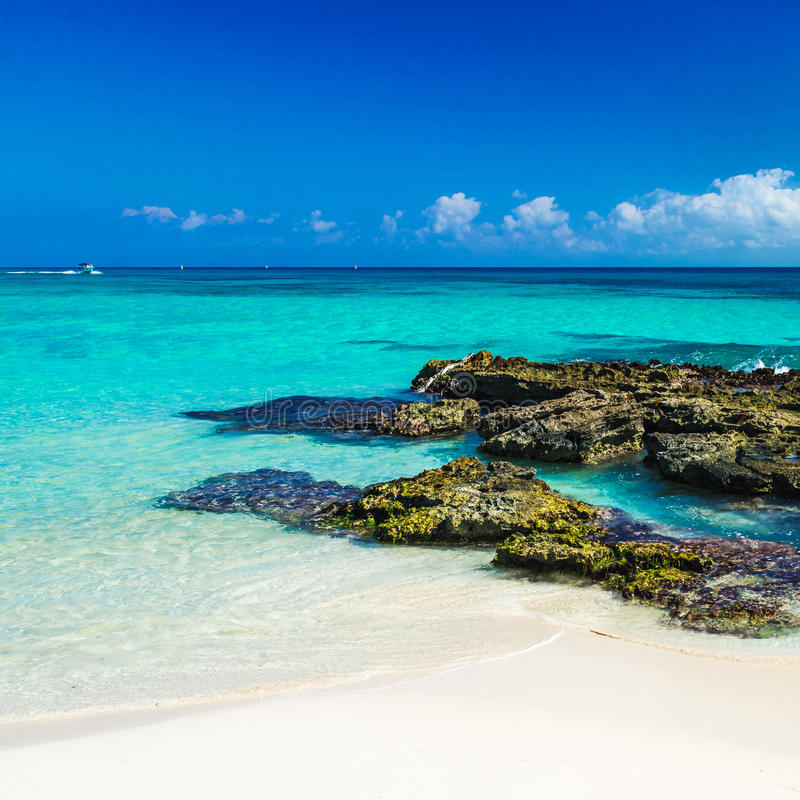 Paradisnaturen, sand, havsvatten, vaggar och sommar på vändkretsen royaltyfri bild
