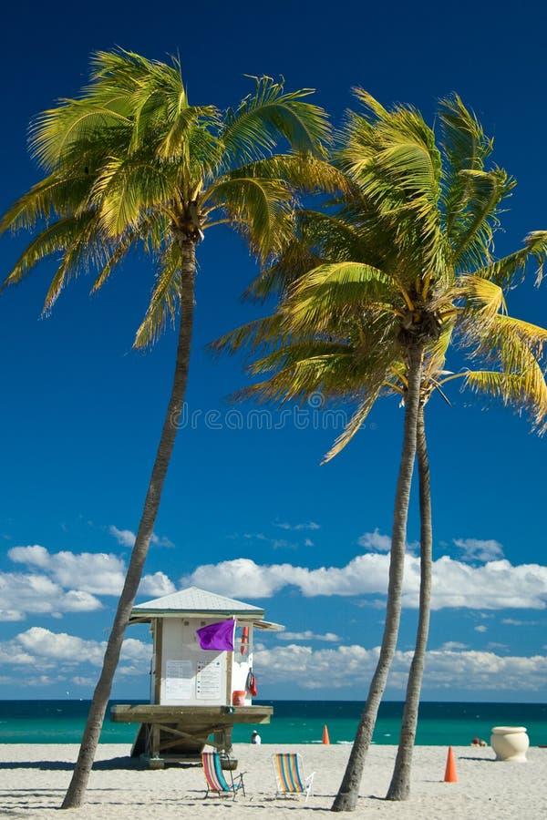 Cabina del bagnino su Miami Beach fotografia stock libera da diritti