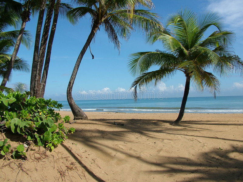 Paradiso dell'isola fotografie stock