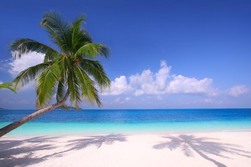 Paradiso dell'isola immagini stock