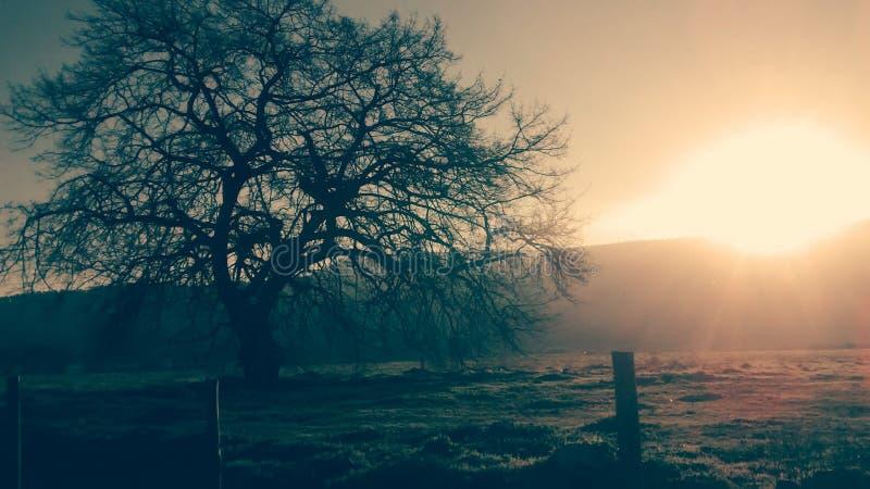 Paradiso di tramonto fotografie stock
