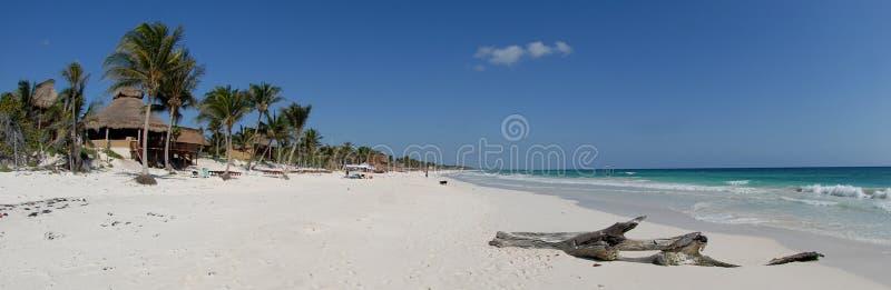 Paradiso tropicale della spiaggia   fotografia stock