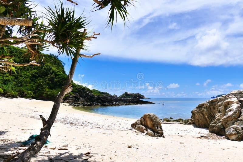 Paradiso tropicale delle palme, della sabbia bianca, del mare del turchese e del cielo soleggiato blu profondo a Zamami, Okinawa, fotografia stock libera da diritti