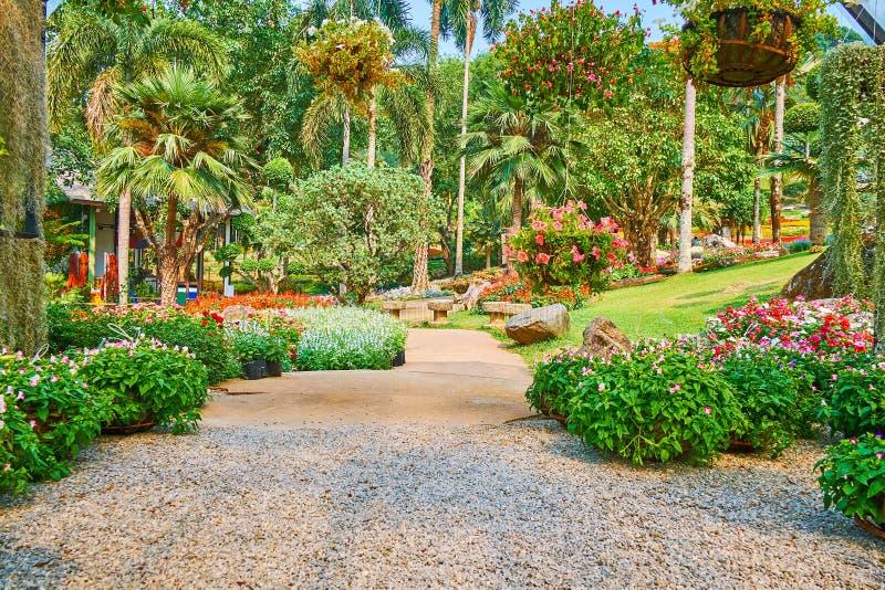 Paradiso verde nel giardino di Mae Fah Luang, Doi Tung, Tailandia immagine stock