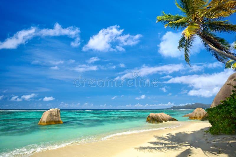 ParadisSeychellerna strand royaltyfri fotografi