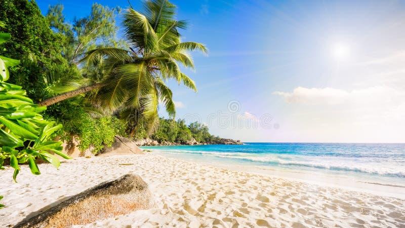 Paradisstrand på Seychellernaen 2 arkivbild
