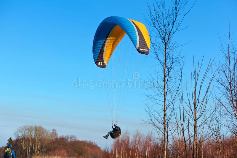 Paraglider above the trees, a paraglider flies over the forest stock photo